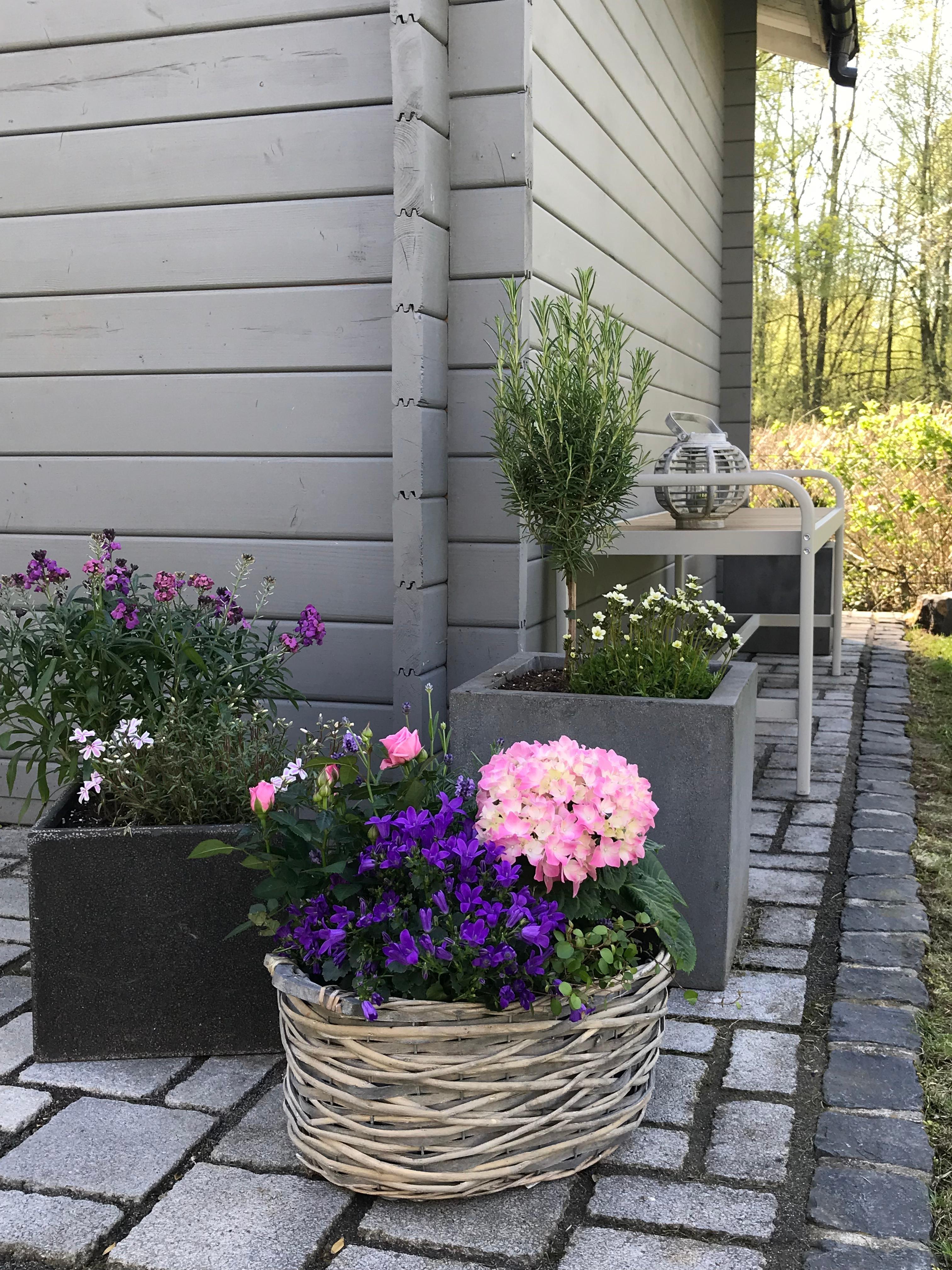 gartenhaus gestalten so nutzt du den platz effektiv. Black Bedroom Furniture Sets. Home Design Ideas