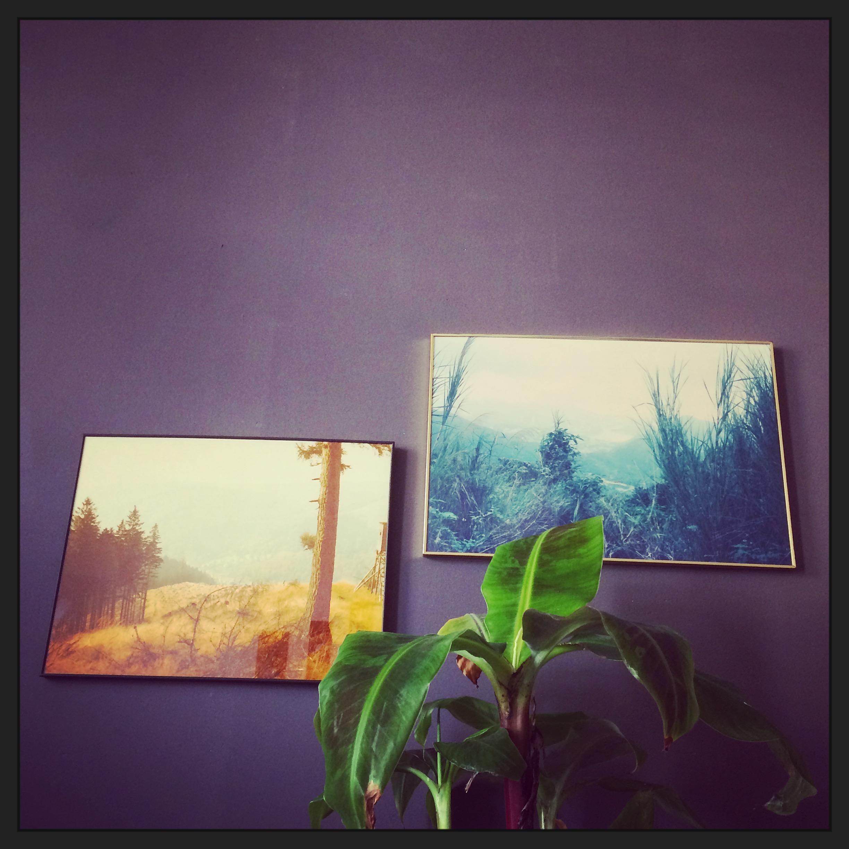 Beige Wandfarbe • Bilder & Ideen • COUCH
